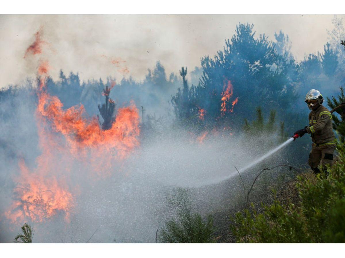 Incendios forestales ceden y comienza reconstrucción
