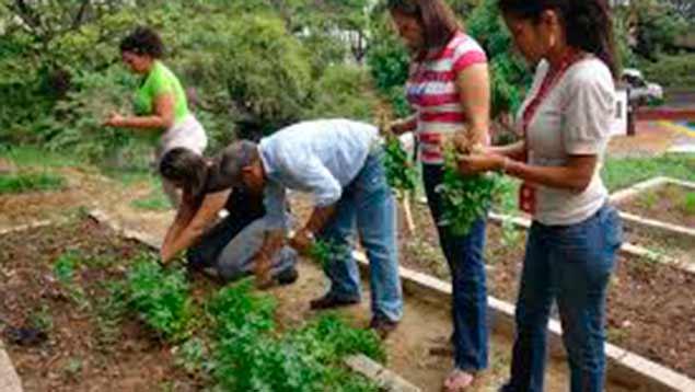 312 agroproductores son beneficiados en el estado Mérida