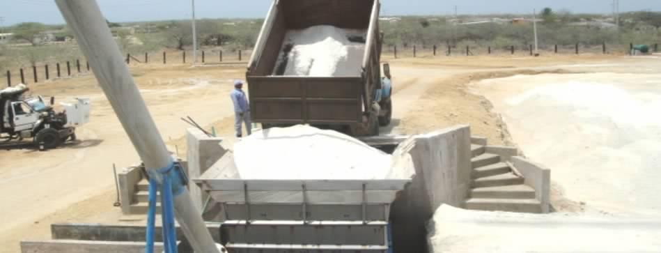 Arias Cárdenas sostuvo encuentro con el presidente de INDUSACA para impulsar la exportación de sal