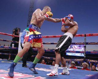 Bolivita-Uzcategui-Boxeo-VersiónFinal-320×260.jpg