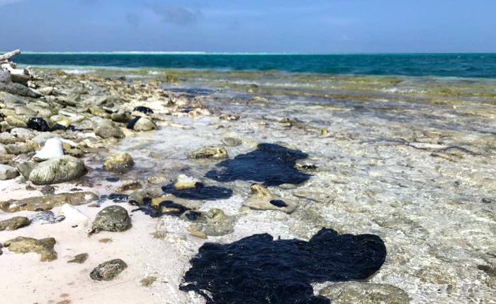 Del Pino: Saneadas 80% de las costas del Golfo de Paria afectadas por derrame de hidrocarburo