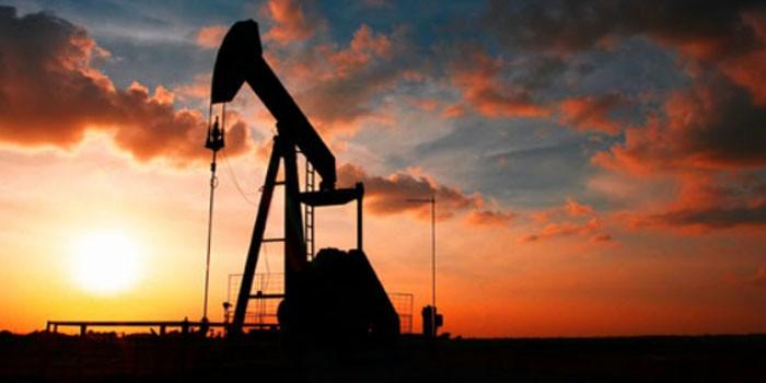 La OPEP y sus competidores cumplen al 98 % el recorte de su producción