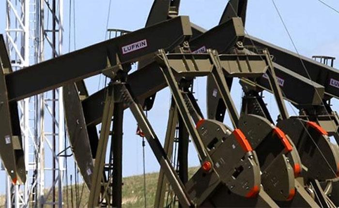 Petrolera_8.jpg