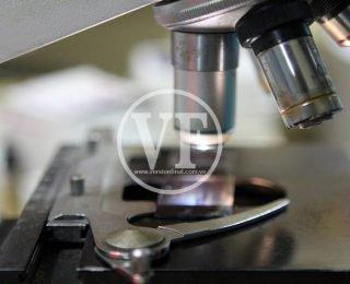IO-Moleculas-320×260.jpg