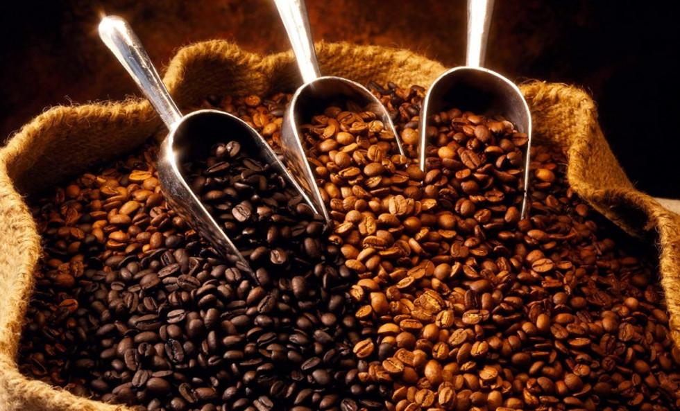 Café Yaracuy inicia operaciones con producción de 1.500 kilos diarios