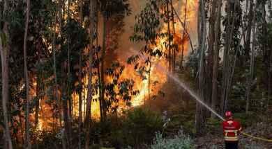 Portugal-Incendio-EFE-VersiónFinal.jpg