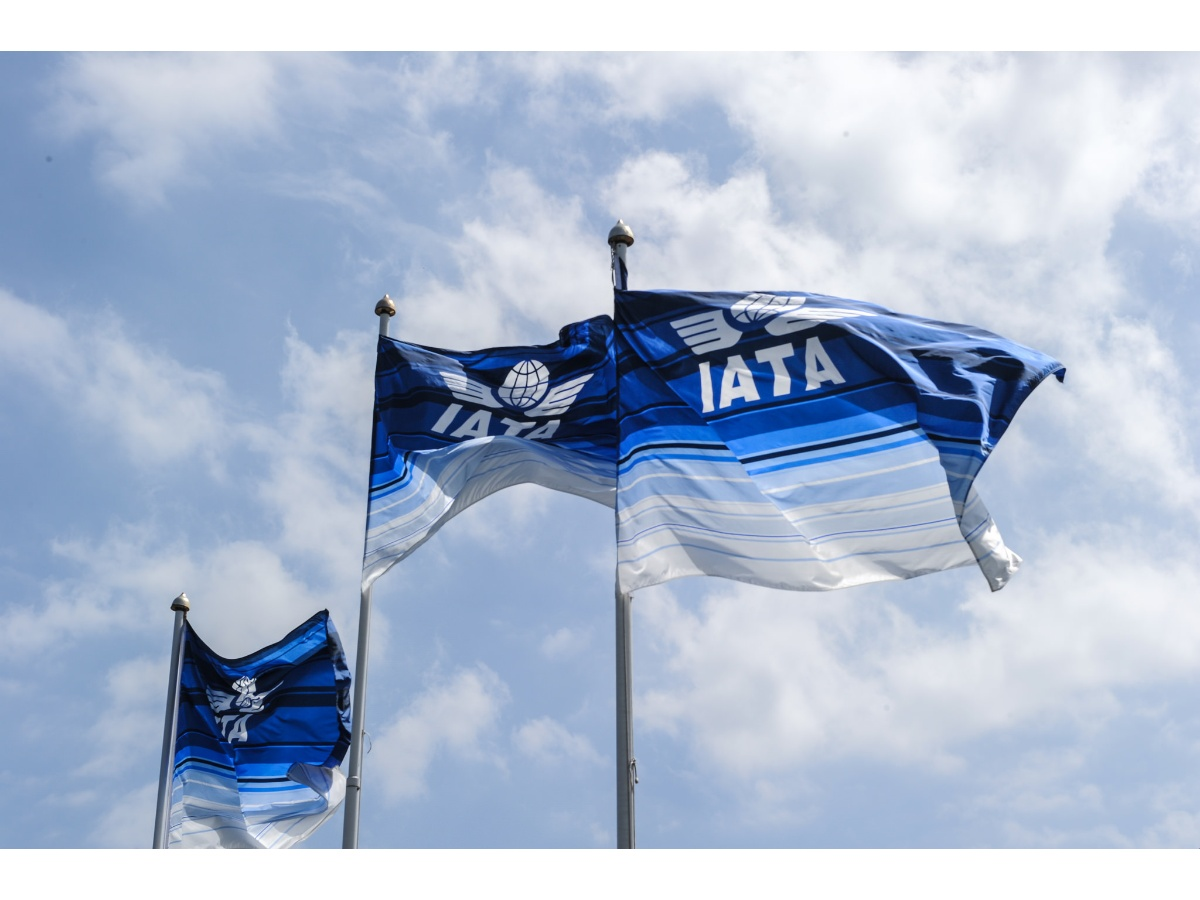 iata-flags-photo-iata.jpg_271325807.jpg