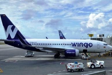 wingo_0.jpg