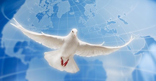 Hoy se celebra el Día Internacional de la Paz (Video)